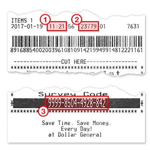dg customer survey